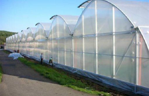 نایلون های عریض صنعتی و کشاورزی